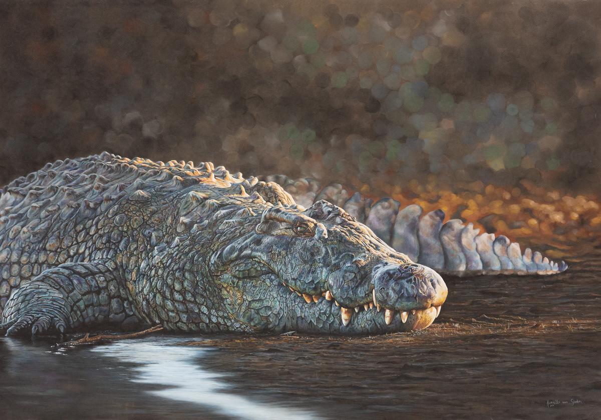 Croc-Web